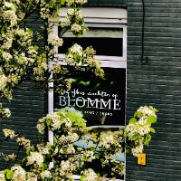 Blomme